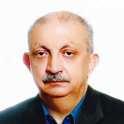 محمدرضا ضیایی بیگدلی